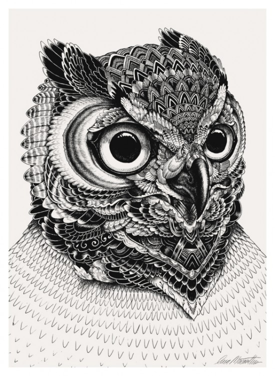 Black and white illustrations by iain macarthur for Tumblr drawing inspiration